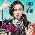 Stick + Stones (UK deluxe edition)