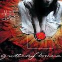 Gutterflower