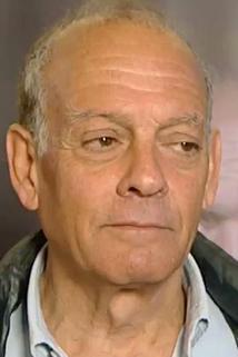 Alberto Negrin