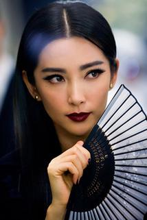 Bingbing Li