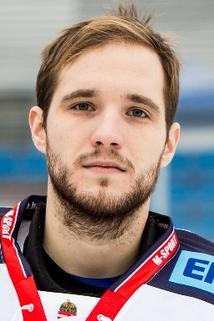 Zoltán Hetényi