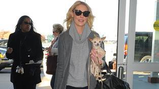 Katherine Heigl: 'Jennifer Lawrence zachránila mého psa'