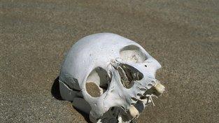 4 nejděsivější historické (archeologické) nálezy v historii