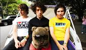 Wombats, The
