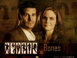 Tapeta: Sběratelé kostí (TV seriál) - Bones