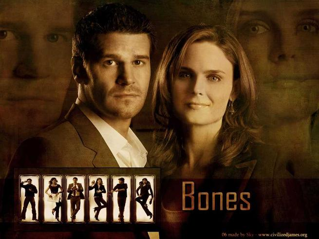 Tapeta: Sbratel kost (TV seril) - Bones