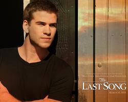 Tapeta: Poslední píseň - Last Song, The