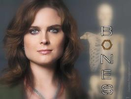 Tapeta: Emily Deschanel