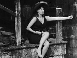 Tapeta: Sophia Loren