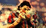 Wallpaper: Zlatan Ibrahimovič