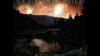 Blut aus nord - The cosmic echoes of non-matter