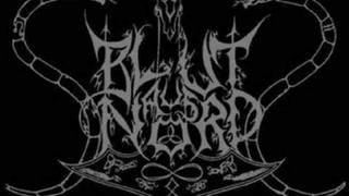 Blut aus Nord - The Last Journey of Ringhorn