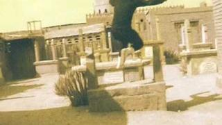 "BONAPARTE ""WHO TOOK THE PILL"" (VIDEO)"