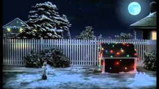 Dog Waiting For Santa(HD).mp4