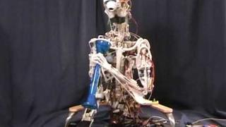 ECCEROBOT - Embodied Cognition in a Compliantly Engineered Robot