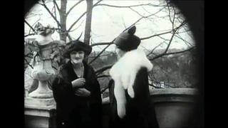 Ema Destinnová (Jediný videozáznam)