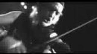 GOGOL BORDELLO - MALA VIDA (LIVE by Vince Tocce)