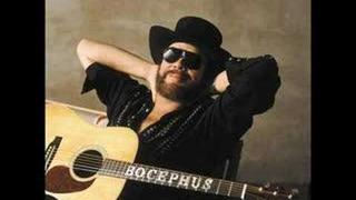 Hank Williams Jr- Iv Got Rights