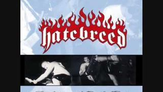 Hatebreed - Afflicted Past