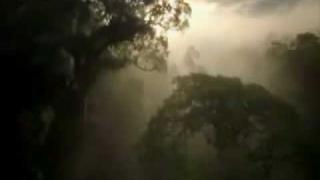 Neurotic Outsiders - Planet Earth