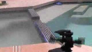 Original Motion-Activated Sprinkler vs. Pigeons