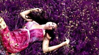 PAPAJAM - LOVE official video