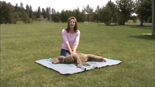 Safe Dog Safety Tip: CPR