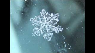 The Russian Futurists - Its Not Really Cold When It Snows