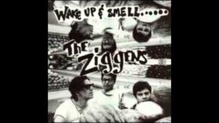 The Ziggens - All the Fun That We Missed