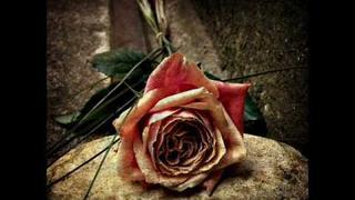 Within Temptation - The Truth Beneath The Rose (lyrics)