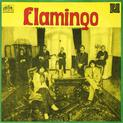 Flamingo 75