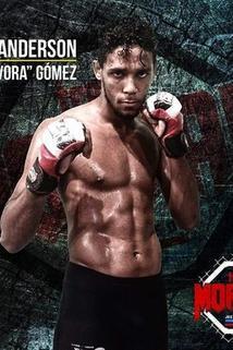 Anderson Gomez