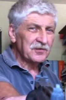 Dardano Sacchetti