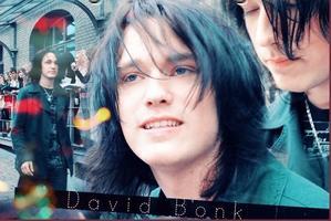 David Bonk