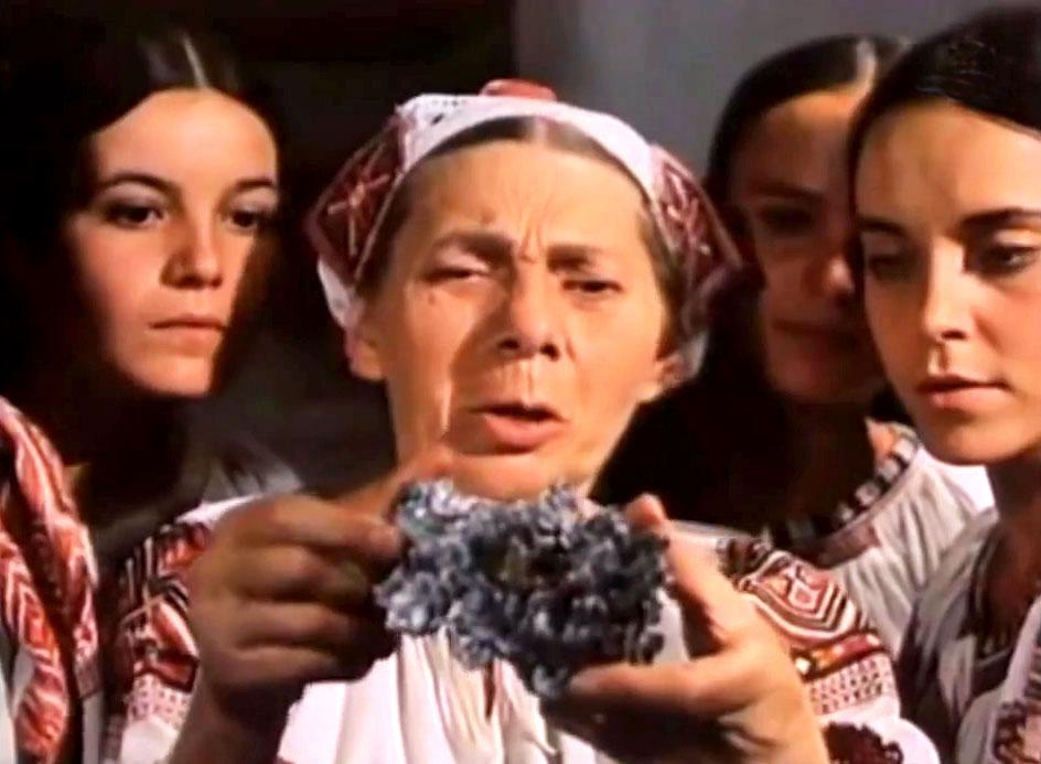 Oľga Adamčíková