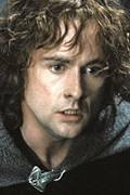 Peregrin 'Pippin' Took