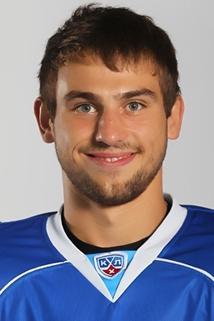 Vladimir Grebenschikov