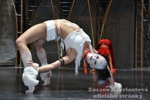 Zuzana Havrlantová