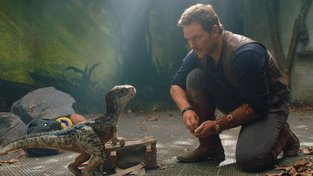Chris Pratt jako Owen Grady