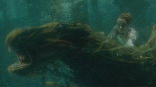 Filmové premiéry: Nový příběh Fantastických zvířat a zhýralé večírky Silvia Berlusconiho