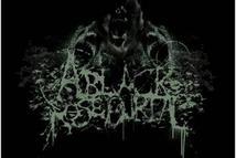 Black Rose Burial, A
