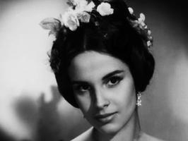 Antonella Lualdi