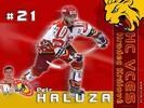 Petr Haluza