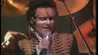 Adam & The Ants, Human beings, live