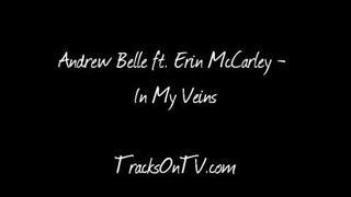Andrew Belle ft. Erin McCarley - In My Veins