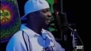 Aries Spears impersonating Snoop, DMX, Jay-z unseen