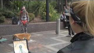 Ashley Roberts Day in Sydney