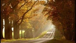 Azure Ray - November