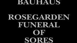 Bauhaus ~ Rosegarden Funeral of Sores