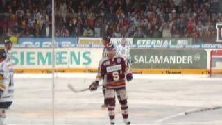 Bílí Tygřici Liberec foto MIX